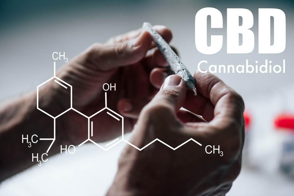 CBD formula - Panda CBD