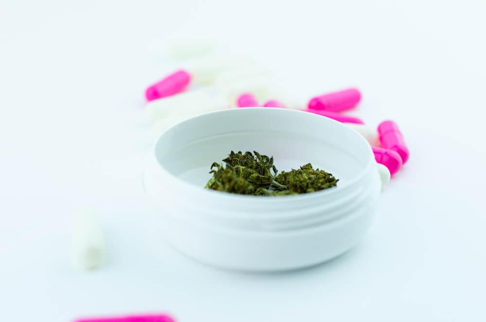 cbd product for pain - Panda CBD