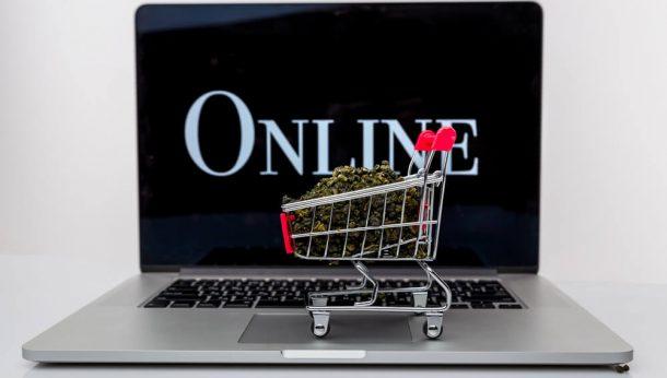 buying CBD online - Panda CBD