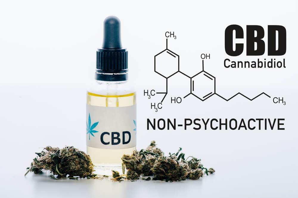non psychoactive CBD - Panda CBD