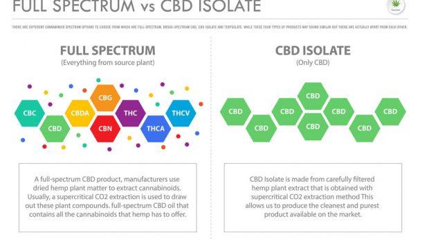 cbd isolate vs. full spectrum cbd - Panda CBD
