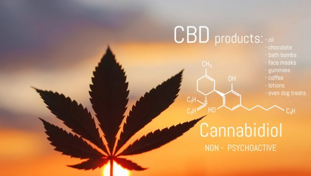 science of CBD - Panda CBD