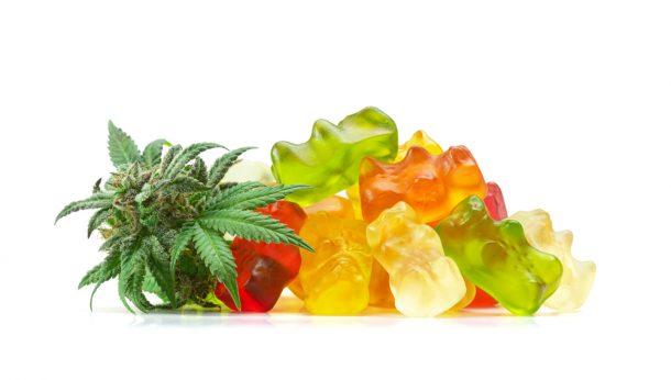 CBD gummy bears - Panda CBD