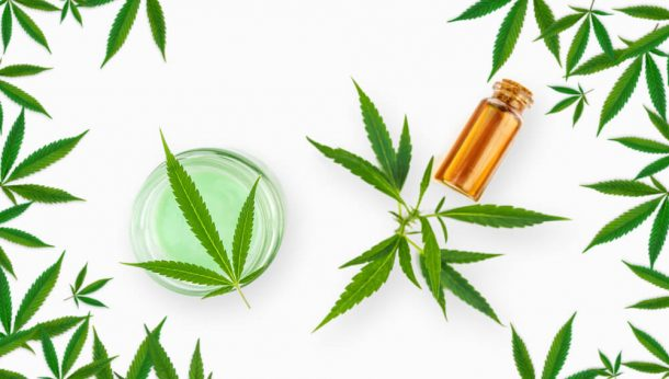 fda outlaws cbd and hemp oil - Panda CBD